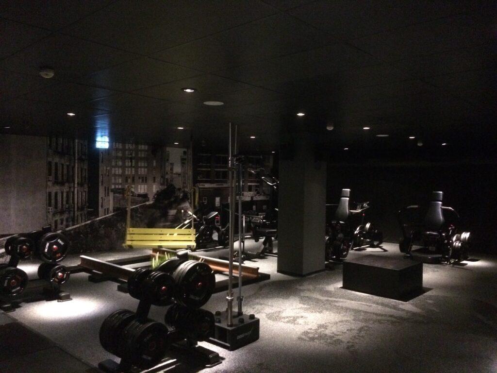Urban gym-Vejle4